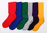 HOUSE P.E. Socks